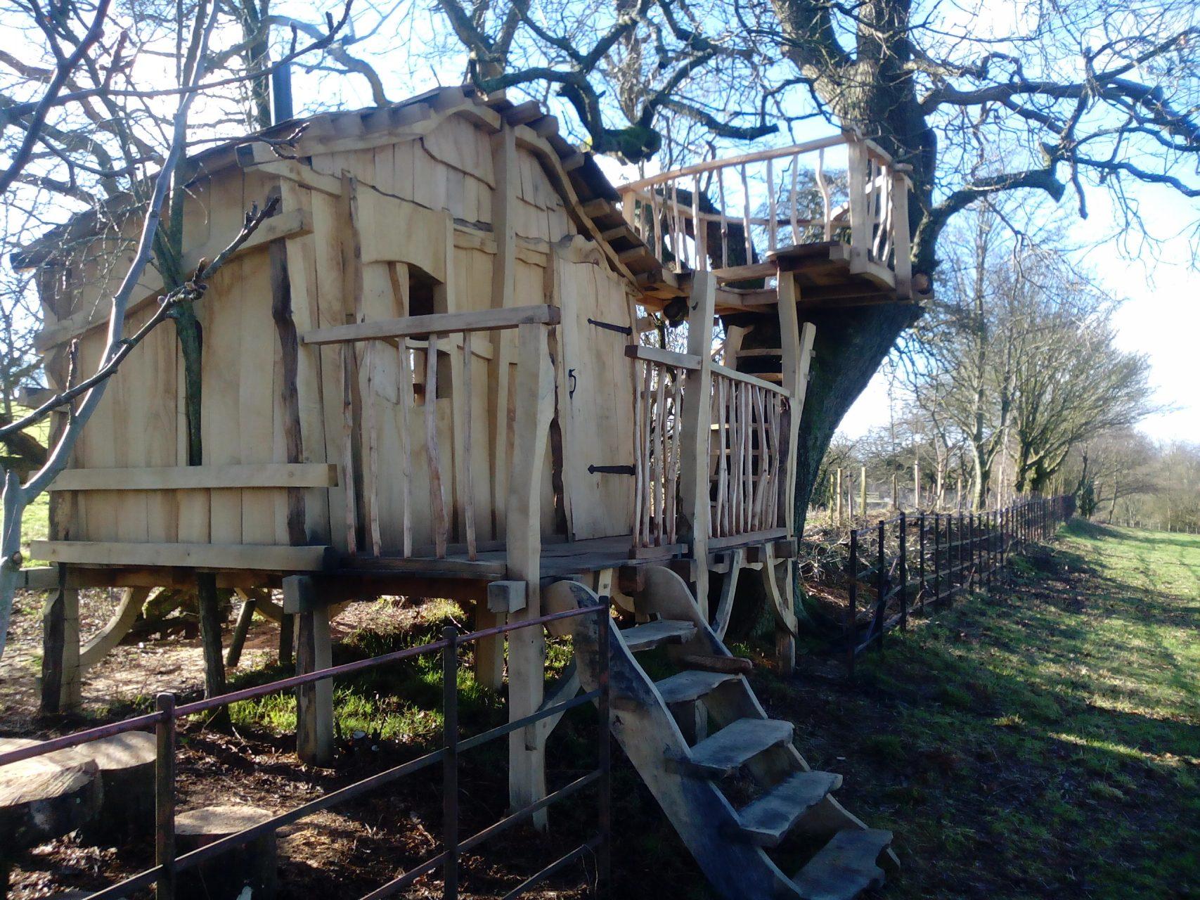 hungerfotd treehouse