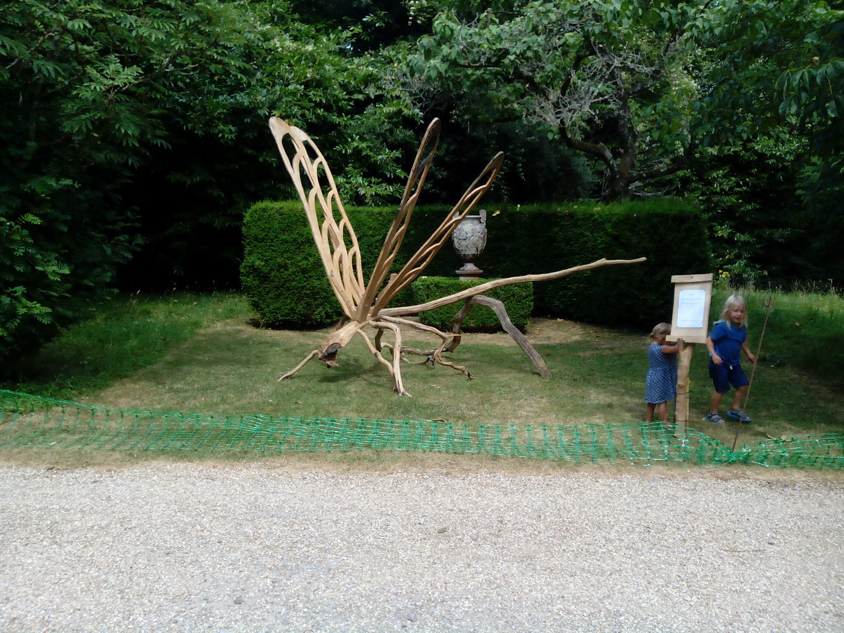 dragonfly at Larmer Tree